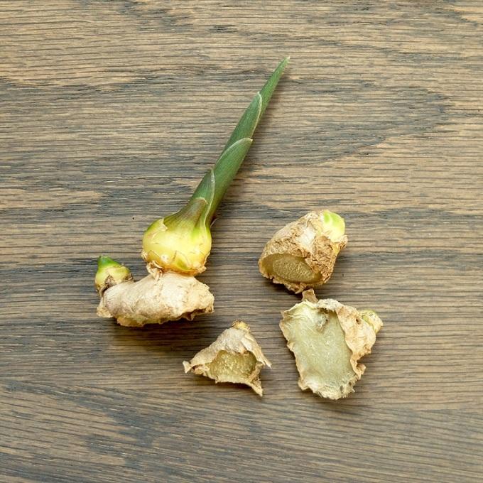 cultivo-interior-verduras-jenjibre-cultivar-casa